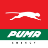 Puma Energy Group